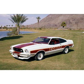 Tablou Canvas Ford Mustang Cobra II 1978