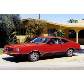Tablou Canvas Ford Mustang Mach 1 hatchback 1974