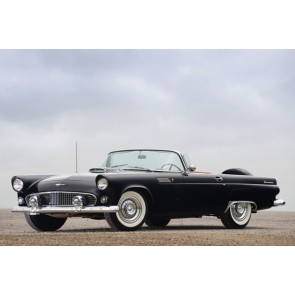 Tablou Canvas Ford Thunderbird 1956