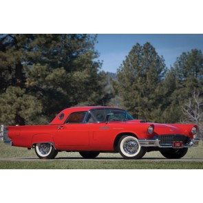 Tablou Canvas Ford Thunderbird 1957