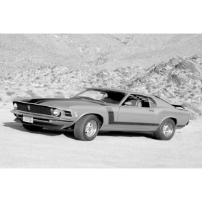 Tablou Canvas Ford Mustang Boss 302 1970