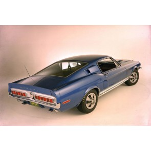 Tablou Canvas Ford Shelby GT500 KR 1968